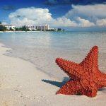 Bahamas, Paraísos Isleños